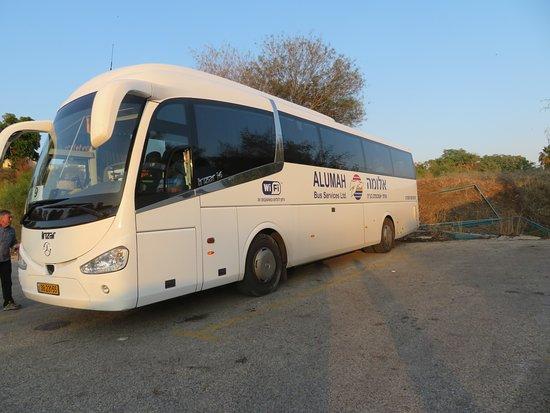 Tel Aviv, Israel: Their large bus