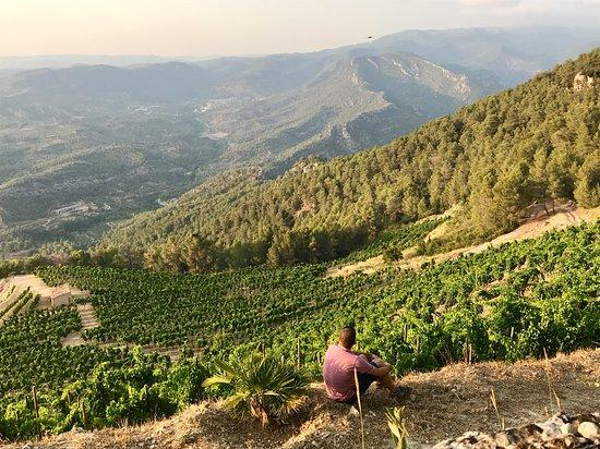 Customized Wine Private Tours in Priorat. Unique Identity: amazing Landscape + Premium Wine + Charming People + Winery Tours + Mediterranean Local Food.