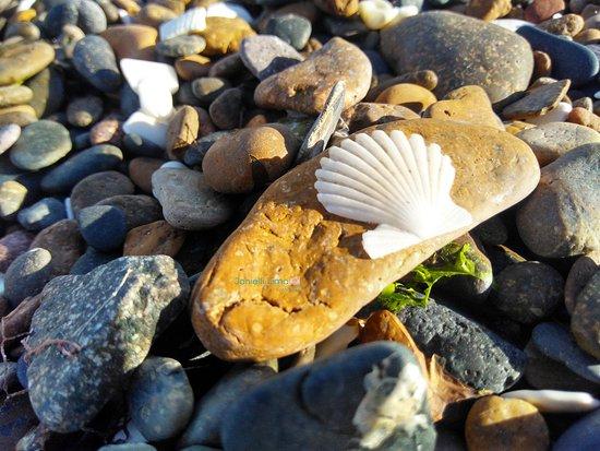 Playa Del Doradillo