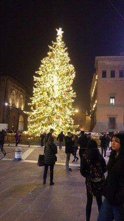 Piazza Maggiore: Praça à noite  com árvore de Natal