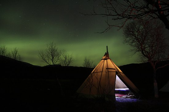 Nordland, Norge: aurora safari and camp