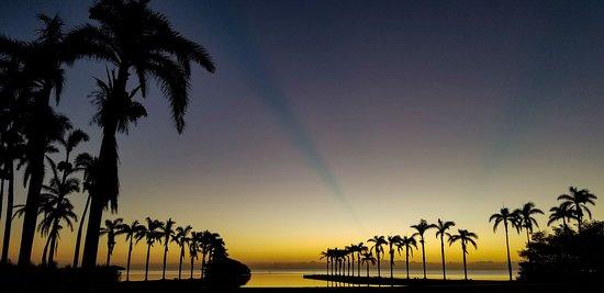 Deering Estate Sunrise Photography Program - Photo by Elias Horna