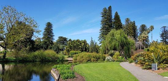 Adelaide Botanic Garden: The botanic garden and museum.