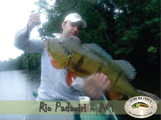 Rio Negro, PR: Tucunare