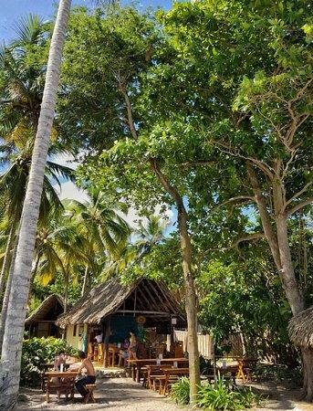 La Sirena Eco Hotel: Vehetarian Restaurant