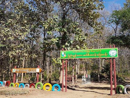 Pyay Elephant Camp