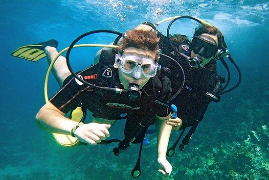 Learn to Scuba Dive in Las Terrenas