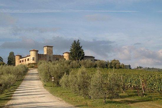 Tour enologico in un castello in