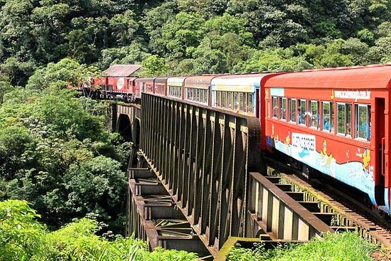 Serra Verde Express : excursion en...