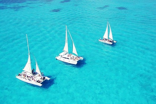 Full-Day Sailing Adventure desde...