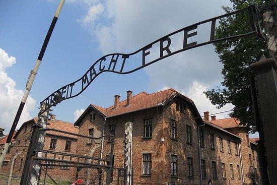 Tour di gruppo di Auschwitz-Birkenau