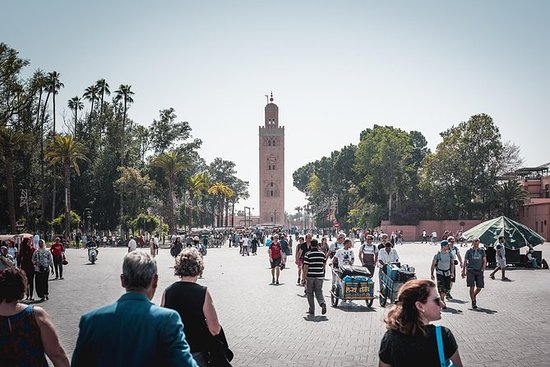 Private Tour: Marrakech walking tour and Camel riding