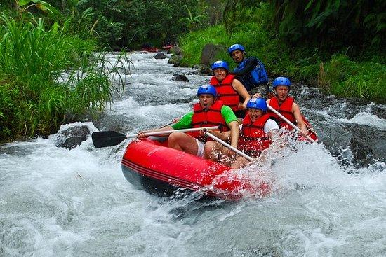 Rafting en aguas bravas de Bali con...