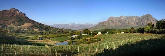 Winemaker-Led Private Wine Tasting...