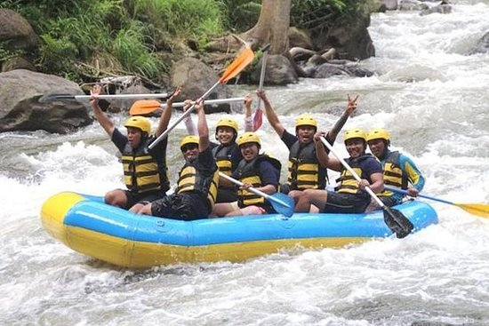 Ayung River Rafting And Ubud Swing Picture Of Ayung River Rafting And Ubud Swing Tripadvisor