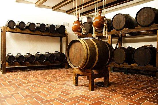 Chianti Noble Wine Tour en Toscane de...