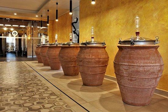 Degustação De Vinhos De Pompeia