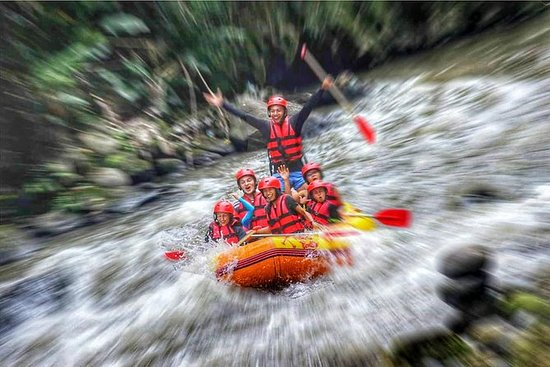 Ubud Tours And White Water Rafting