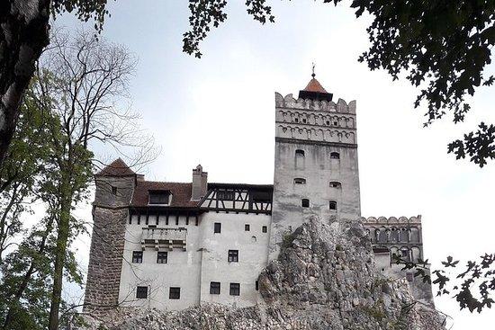 Transylvanie: visite du château et de...