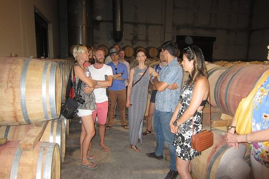 Wine tour with 2 wine tastings and...