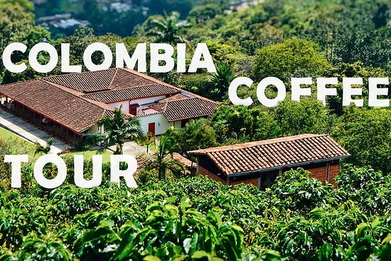Colombia Coffee Tour - Demi-journée