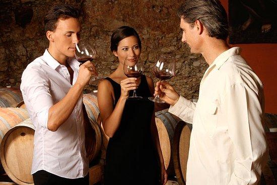 Circuit de dégustation de vins malbec...