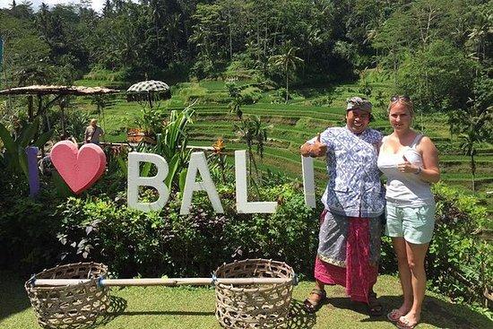 Tour privado al campo de Bali guiado...