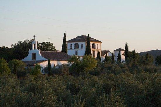 科尔多瓦橄榄油磨,葡萄酒,激情