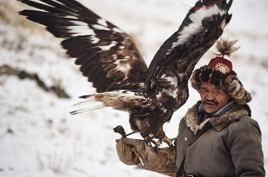 Altai Mountains and Kazakh Eagle Hunter mixed tour