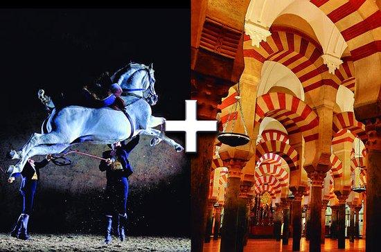 Jerez-Cadiz & Cordoba (2 Days Trips)