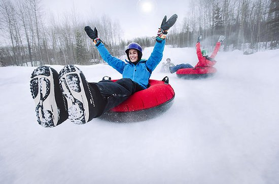 Skiing for Beginner, snow tubing or...