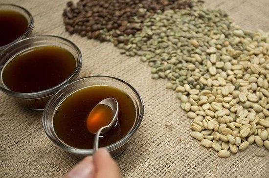 Um gosto de Aquiares - 2 horas Coffee...