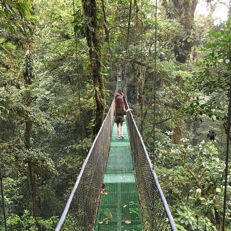 Heliconias Rain Forest Tour