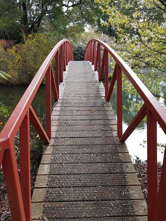 Bridge over one of the pools