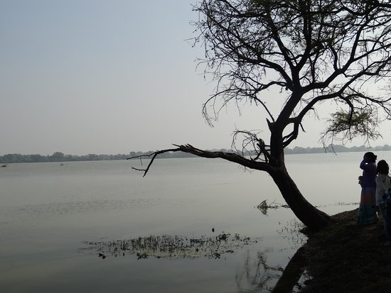 Бхаратпур, Индия: Excellent view of Bharatpur bird sanctuary