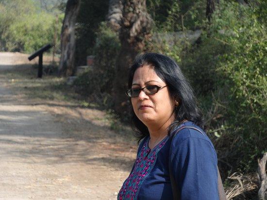 Бхаратпур, Индия: My wife enjoying to view birds at bharatpur bird sanctuary