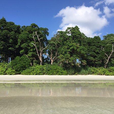 Radhanagar Beach صورة فوتوغرافية