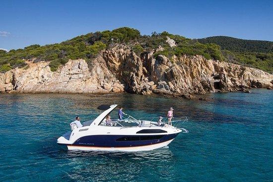 Nova Boat Trips