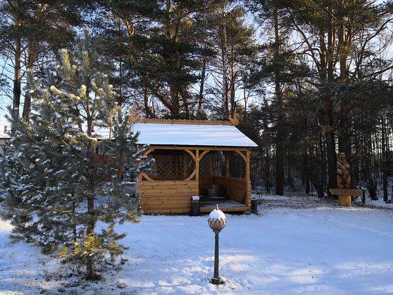 Киржач, Россия: Лесо-парковая зона для прогулок. Чистый сосновый лес, свежий воздух.  http://hotel-dubrovka.ru