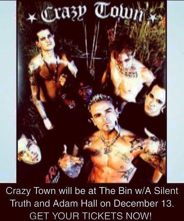 The Looney Bin: Crazy Town