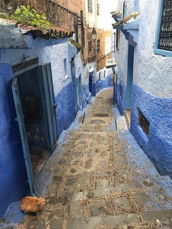 The 'Blue City'