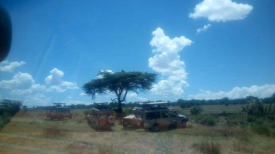 Shidolya Tours and Safari: having a rest at the park