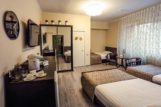 Monroe Hotel: Свежий, просторный, уютный номер на первом этаже, рассчитанный на размещение трех человек.  В номере  три полутороспальные кровати. Стол, шкаф купе, три стул-кресла, телевизор, кондиционер. Из окна, выходящего на юг, открывается вид на цветочные клумбы и зону отдыха.