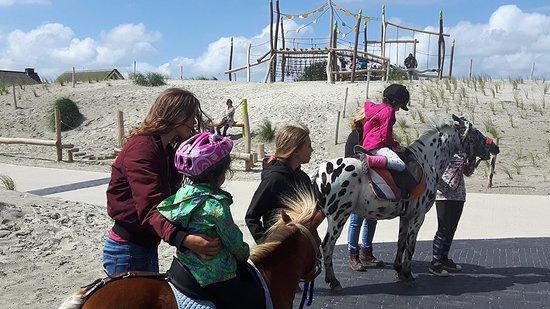 Maak een ritje op de rug van een lieve pony