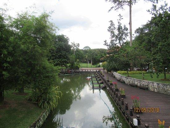 path around the lake area