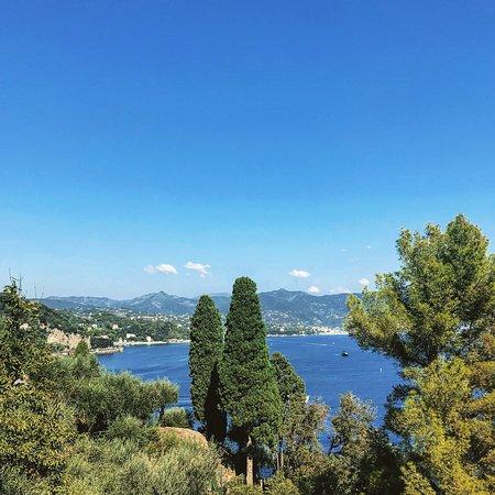 Al Faro di Portofino Lounge Bar: Visione incantevole e dolce vita a Portofino.