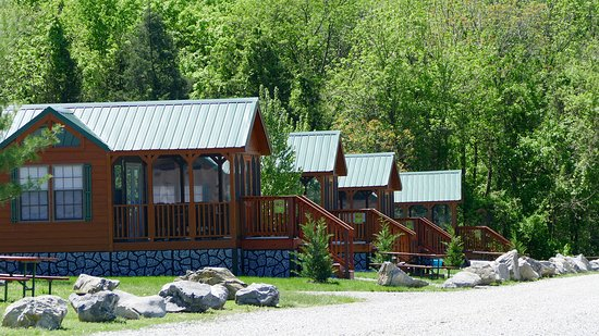 Bear-Themed Premium Loft Cottages