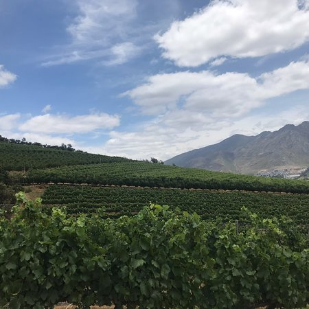 Franschhoek Winelands Scooter Tour Picture