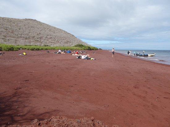 Rabida, Ecuador: Red beach