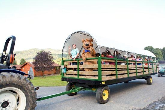 """Yogi Bear's Jellystone Park Camp-Resort Luray: """"Hey Hey"""" Wagon Rides"""